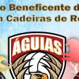 A equipe Águias Rugby em Cadeira de Rodas promove sua primeira atividade na cidade de Vinhedo, São Paulo. Com divisão de seus atletas, formou as equipes Gaviões do Rugby e […]